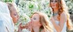 Свадебная история, Зеленоград